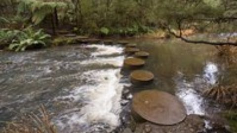 Easier Ways to Talk to Your Children: Hop on Stepping-Stones, Avoid Swamps